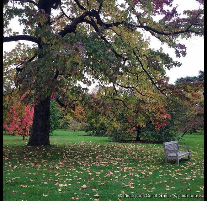Kew Gardens, jardim para fugir da correria