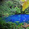"""Nanda Blue Hole (Vanuatu) - Conhecido como o """"buraco azul mais bonito de Vanuatu"""", Nanda Blue Hole é, literalmente, um buraco com águas azuis cristalinas que formam uma piscina natural de tirar o fôlego. O fenômeno natural é formado por nascentes de água pura e fresca que sobem para a superfície cortando o calcário. O lugar é imperdível!"""
