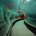 Aquário abriga um grande túnel...