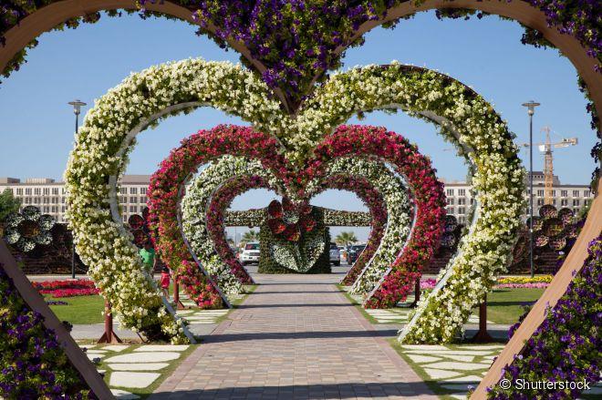 Com 45 milhões de flores o Miracle Gardens é o maior jardim de flores naturais do mundo, mesmo sendo localizado no deserto