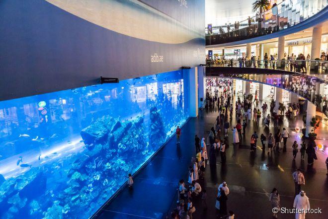 O Dubai Mall possui um dos maiores aquários do planeta, com mais de 33 mil animais marinhos