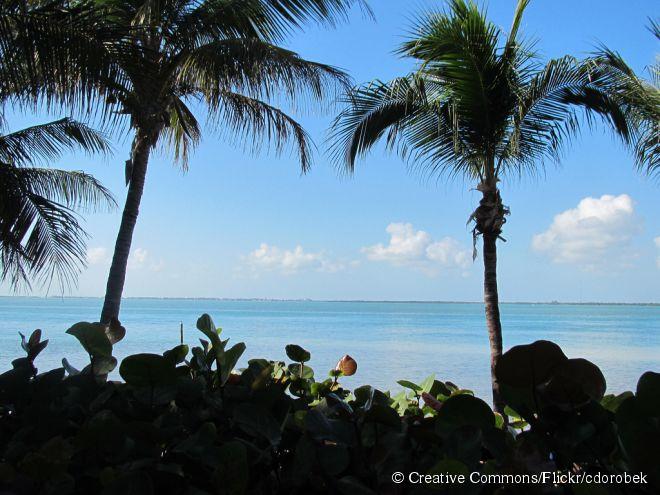 A Ilha Little Palm fica no fim de uma rodovia de 4 quilômetros, que passa por cima do mar, e o local parece outro universo