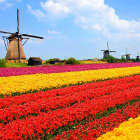 Holanda: 10 Patrimônios Mundiais para visitar no país