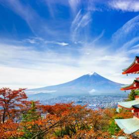 Dicas de Viagem: Tóquio! Como aproveitar a megalópole japonesa