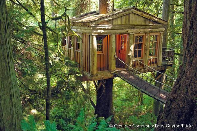 O Treehouse Point, em Issaquah, Washington, é um desses estabelecimentos inusitados