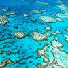 Grande Barreira de Corais, Austrália:  o local mais famoso e incrível para quem gosta de mergulhar é a Grande Barreira de Corais, que representa a maior estrutura viva do mundo. É impossível não se maravilhar com a quantidade de animais, cores e a grandiosidade desta barreira de corais. Um dos pontos mais procurados é Ilha Lady Elliot.
