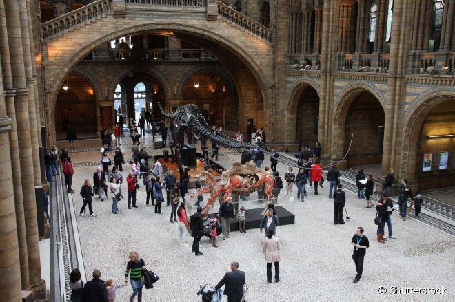 O Museu de História Natural está entre os mais visitados do mundo