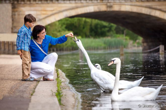 O Hyde Park, no centro de Londres, é o parque urbano mais frequentado da cidade