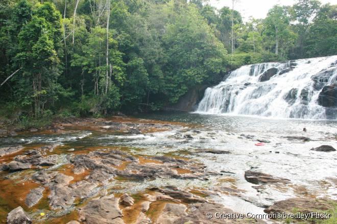 Com quatro metros de queda e 15 metros de largura, Tijuípe é a cachoeira preferida dos turistas em Itacaré