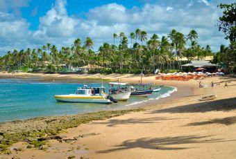 Dicas de viagem: Mata de São João, uma das cidades mais visitadas da Bahia