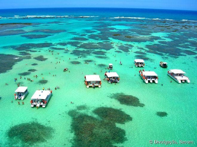 As piscinas naturais ficam a 25 minutos de barco desde o centrinho de Maragogi