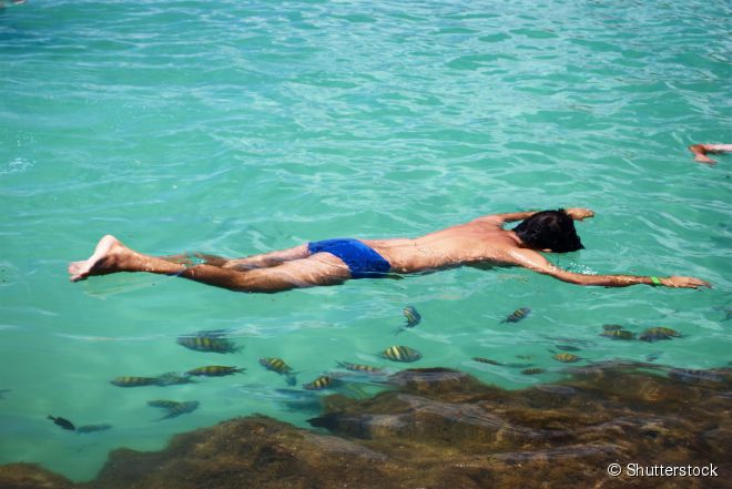 Basta mergulhar o rosto no mar para ver uma infinidade de peixinhos coloridos e corais