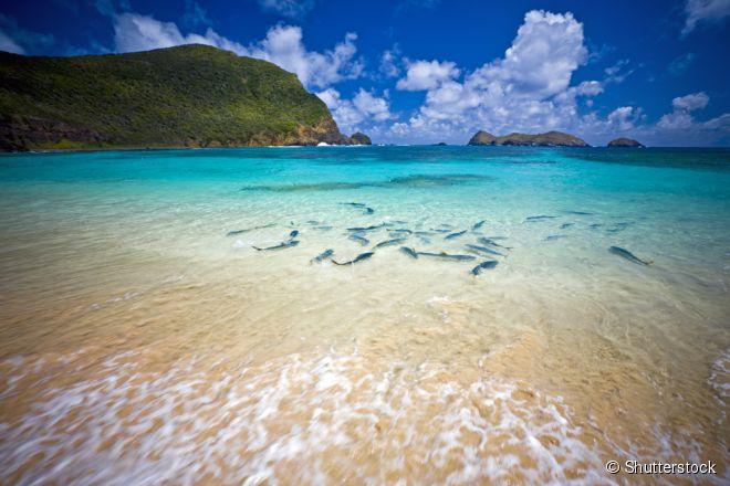 """A Ilha de Lord Howe, na Austrália, é uma das """"praias secretas"""" mais bonitas do mundo"""