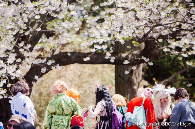 O evento Cherry Blossom Festival é uma homenagem à cultura japonesa
