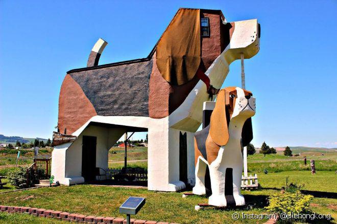 Em Idaho, nos Estados Unidos, você pode se hospedar em um hotel com formato de cachorro. O Dog Bark Park Inn é todo decorado por dentro com a temática canina. O melhor é que você poderá se hospedar em um loft único e aproveitá-lo com a família na maior tranquilidade