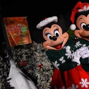 <strong>Todos os personagens do parque se fantasiam com temática natalina! Fofo demais,...
