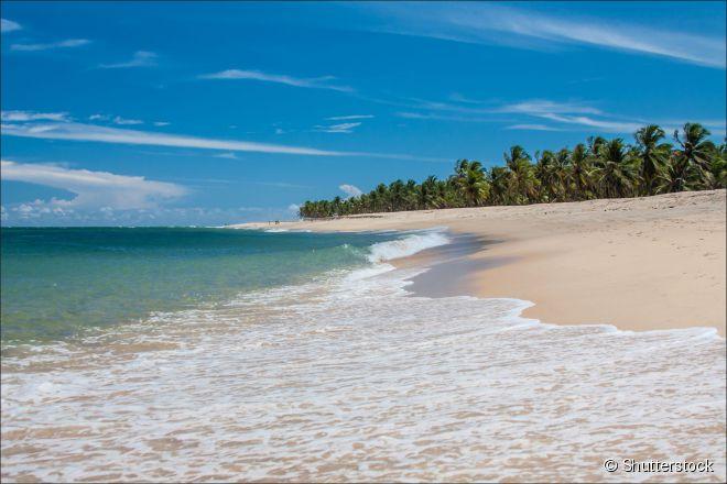 Emoldurada por coqueiros, a praia do Gunga é conhecida por suas águas transparentes e tranquilas