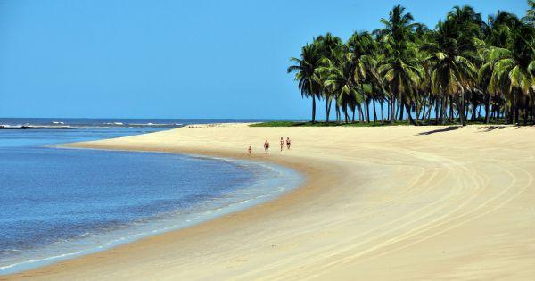 Turismo em Alagoas: 10 praias para mergulhar no estado - Pureviagem.com.br