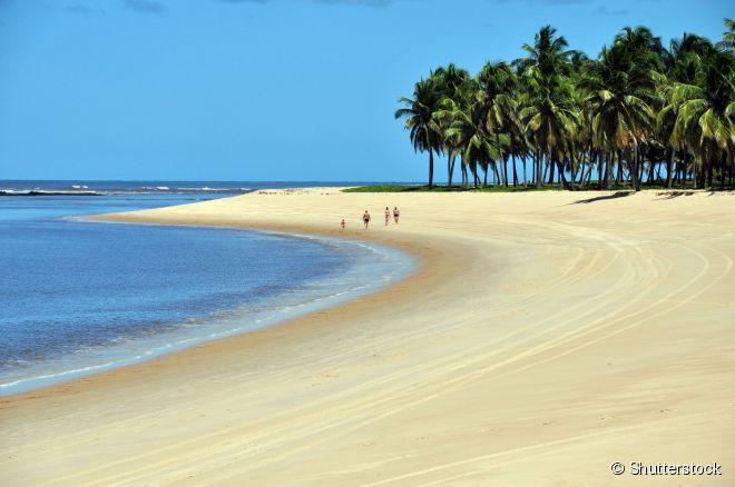 A praia do Gunga fica na costa sul de Alagoas, a 33 quilômetros da capital Maceió
