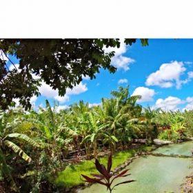 Rio Grande do Norte: Conheça o Tao Paradise, atração do Vale do Catolé
