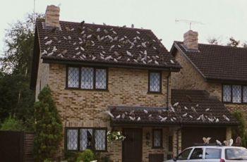 Imagina, mora na antiga casa de Harry Potter?