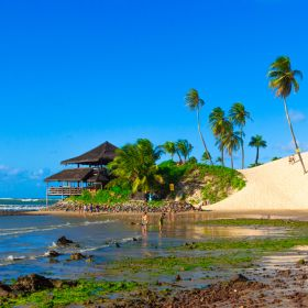 Natal: Praias para conhecer em um bate-volta da capital do Rio Grande do Norte