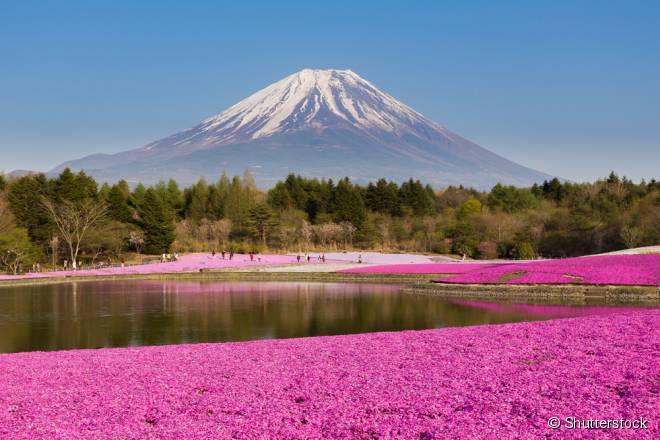 O Monte Fuji é conhecido mundialmente por seu esplendor natural e significado espiritual, além de ter grande influência na cultura japonesa