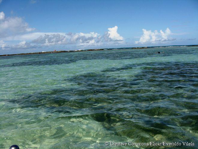 Na maré baixa, várias piscinas naturais rasas se formam, onde as pessoas podem nadar tranquilamente