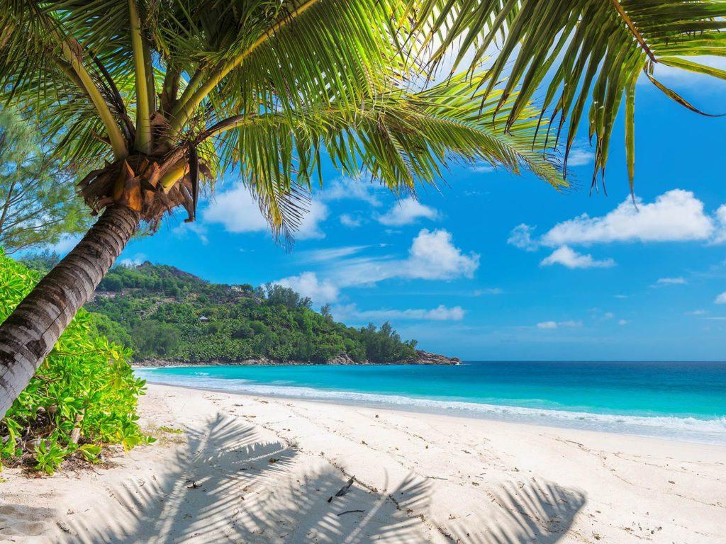 Países do Caribe: Jamaica