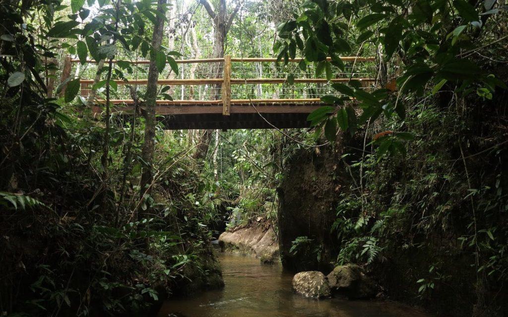 Passeios em Porto Seguro: Parque Nacional Pau-Brasil