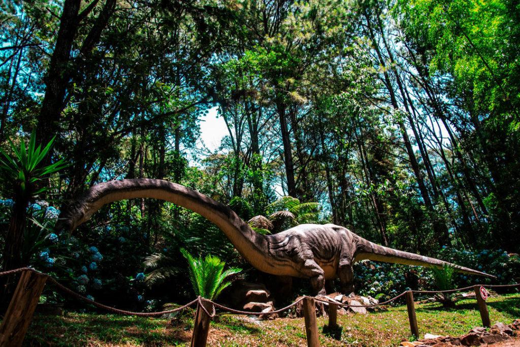 Vale dos Dinossauros Canela