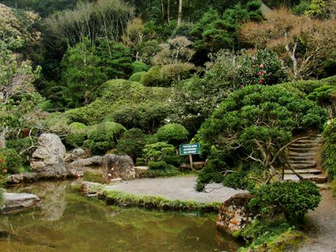 Jardim Japonês - Poços de Caldas