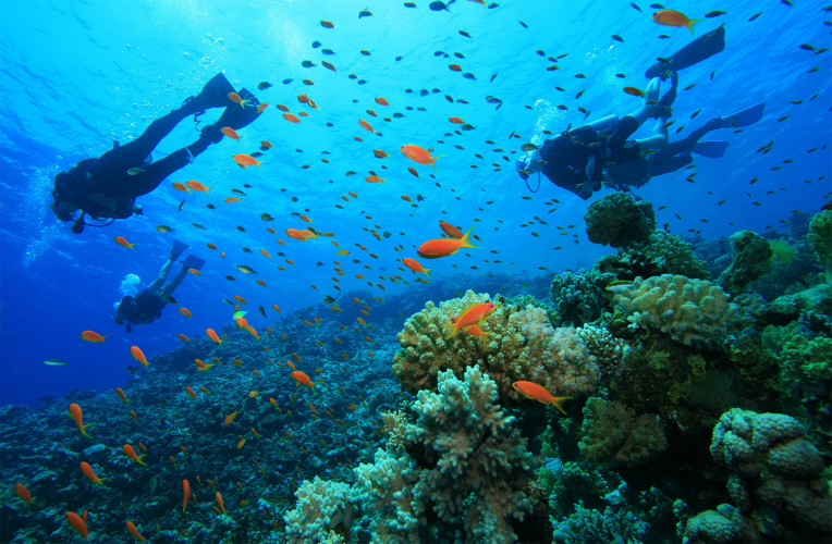 Esportes aquáticos e mergulho