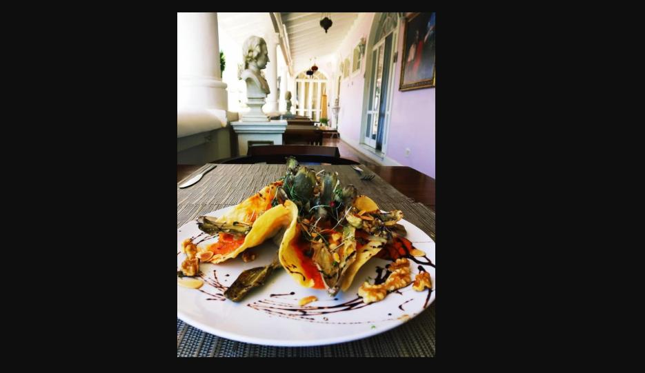 Sohho Gastronomia
